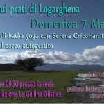 yoga in Logarghena copia